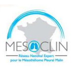 Logo : MESOCLIN